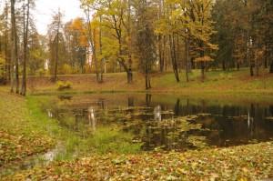 Парк с прудами